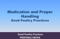 Medication and Proper Handling of Poultry