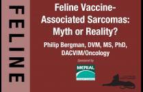 Feline Vaccine-Associated Sarcomas: Myth or Reality?