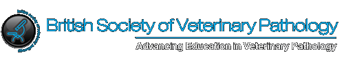 British Society Of Veterinary Pathology | Veterinary Association