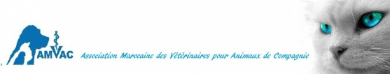Association Marocaine Des Veterinaires Pour Animoux de Companie | Veterinary Association