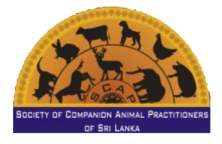Society of Companion Animal Practitioners of Sri Lanka | Veterinary Association