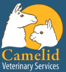 Camelid Veterinary Services | Veterinary Training Company