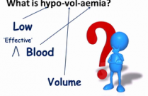Shock, Hypovolaemia and Dehydration (S Jasani DACVECC, 2014)