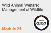 Module 21 Wild Animal Welfare: Management of Wildlife