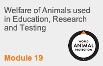 Module 19 Welfare of Animals used in Education, Research and Testing