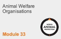 Module 33 Animal Welfare Organisations