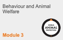 Module 3 Behaviour and Animal Welfare