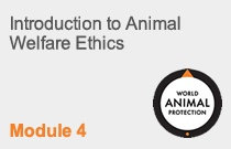 Module 4 Introduction to Animal Welfare Ethics