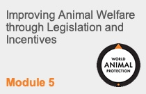 Module 5 Improving Animal Welfare through Legislation and Incentives
