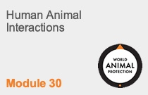 Module 30  Human Animal Interactions