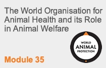 Module 35 The World Organisation For Animal Health And it's Role In Animal Welfare