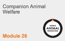 Module 26 Companion Animal Welfare