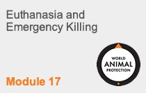 Module 17 Euthanasia and Emergency Killing
