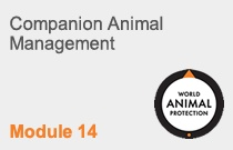 Module 14 Companion Animal Management