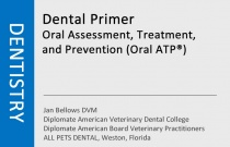 Dental Primer - Oral Assessment, Treatment, and Prevention