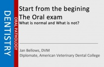 Start from the begining - The Oral exam - What is normal and What is not?