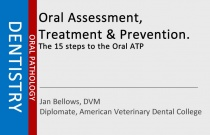 Oral Assessment, Treatment & Prevention. The 15 steps to the Oral ATP