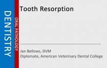 Tooth Resorption
