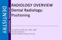 Dental Radiology: Positioning