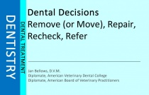 Dental Decisions : Remove (or Move), Repair, Recheck, Refer