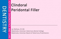 Clindoral Peridontal Filler