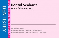 Dental Sealants - What When Why