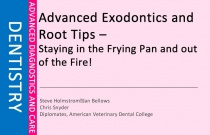 Advanced Exodontics and Root Tips – Staying in the Frying Pan and out of the Fire!