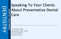 Speaking To Your Clients About Preventative Dental Care