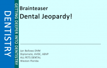 Dental Jeopardy!