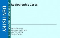Radiographic Cases