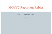 MOVVC Report on Rabies