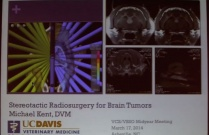 Stereotactic Radiosurgery for BrainTumors