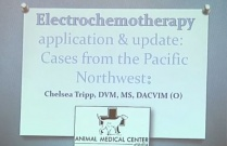 Electrochemotherapy Application & Update: Cases from the PNW