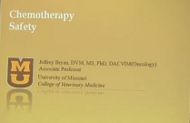 Chemotherapy Safety: A Brief Quiz and Update