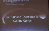 Virus-based Therapies for Canine Cancer
