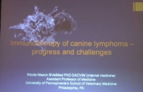 Immunotherapy of Lymphoid Neoplasia