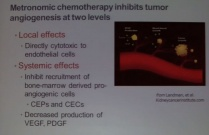 Metronomic Chemotheraphy in Clincial Practice: Time to Rethink the Targets and Redefine the Strategies of Anti-Cancer Theraphy