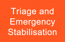 Triage and Initial Stabilisation of Emergency Cases
