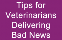 Tips for Veterinarians Delivering Bad News