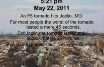 Joplin- A Summary of Veterinarian's Experiences