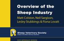 Overview of the UK Sheep Industry and Introduction to the webinar series