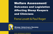 Welfare Assessment / Outcomes and Legislation affecting Sheep Keepers and Clinicians