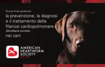 2014 AHS Canine Heartworm Guidelines ITALIAN