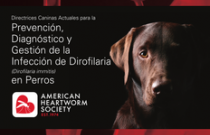 2014 AHS Canine Heartworm Guidelines SPANISH