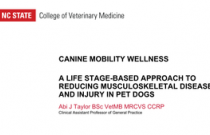 Canine Orthopedics Course Part 6: Canine Mobility Wellness
