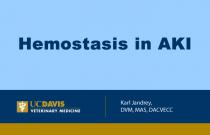 Hemostasis in AKI