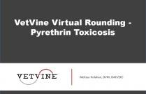VetVine Virtual Rounding - Pyrethrin Toxicosis