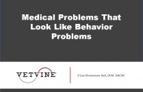 Medical Problems That Look Like Behavior Problems