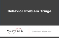Behavior Problem Triage