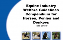 Equine Industry Welfare Guidelines Compendium for Horses, Ponies and Donkeys (Third Edition)